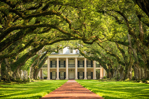 The stunning Oak Alley Plantation