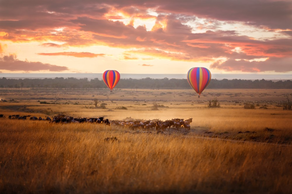 While countless memories have been created abroad, Pete recalls his African safari a highlight.
