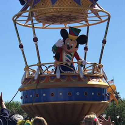 Consultant Review of Walt Disney World