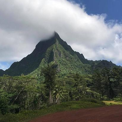Consultant Review of Tahiti
