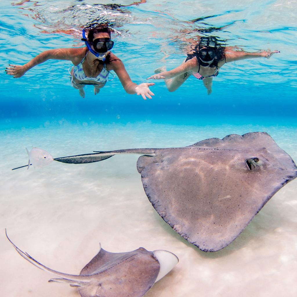 Cayman Island Vacation Packages with Airfare | Liberty Travel
