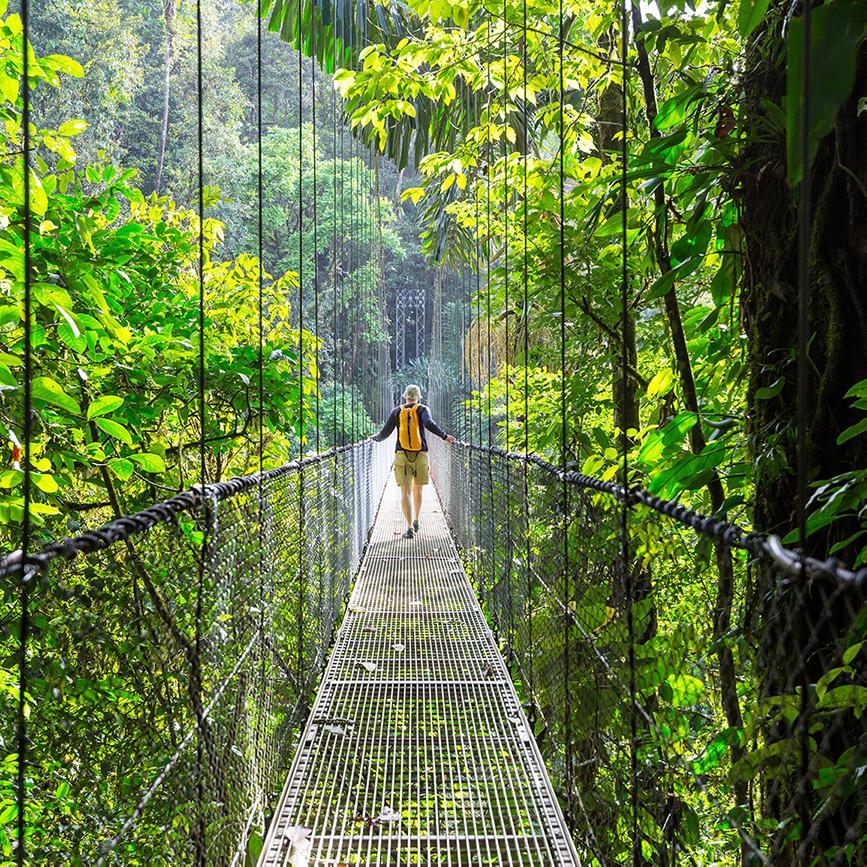 Walking along a suspension bridge through the rainforest on a Costa Rica tour