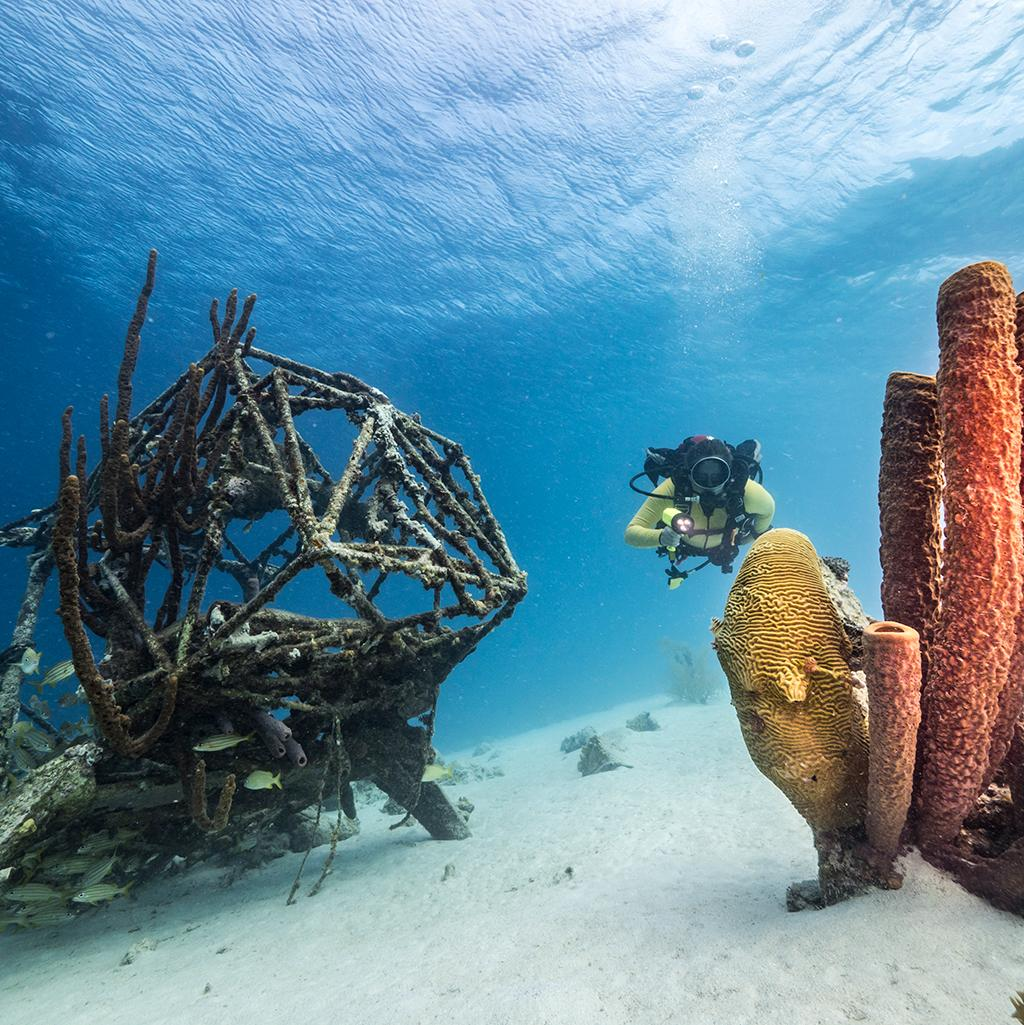 World class scuba diving with Curacao vacation packages