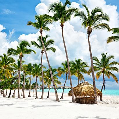 palm trees line the beach in Cap Cana, Dominican Republic