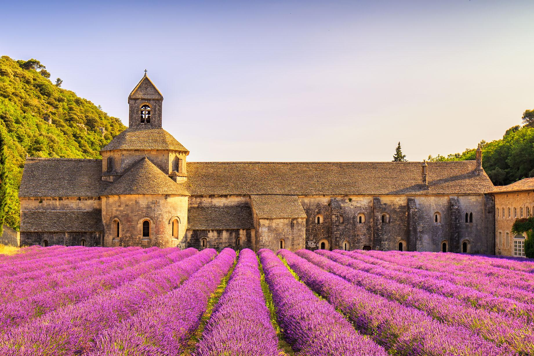 View of lavender fields at Senanque monastery with France vacation packages