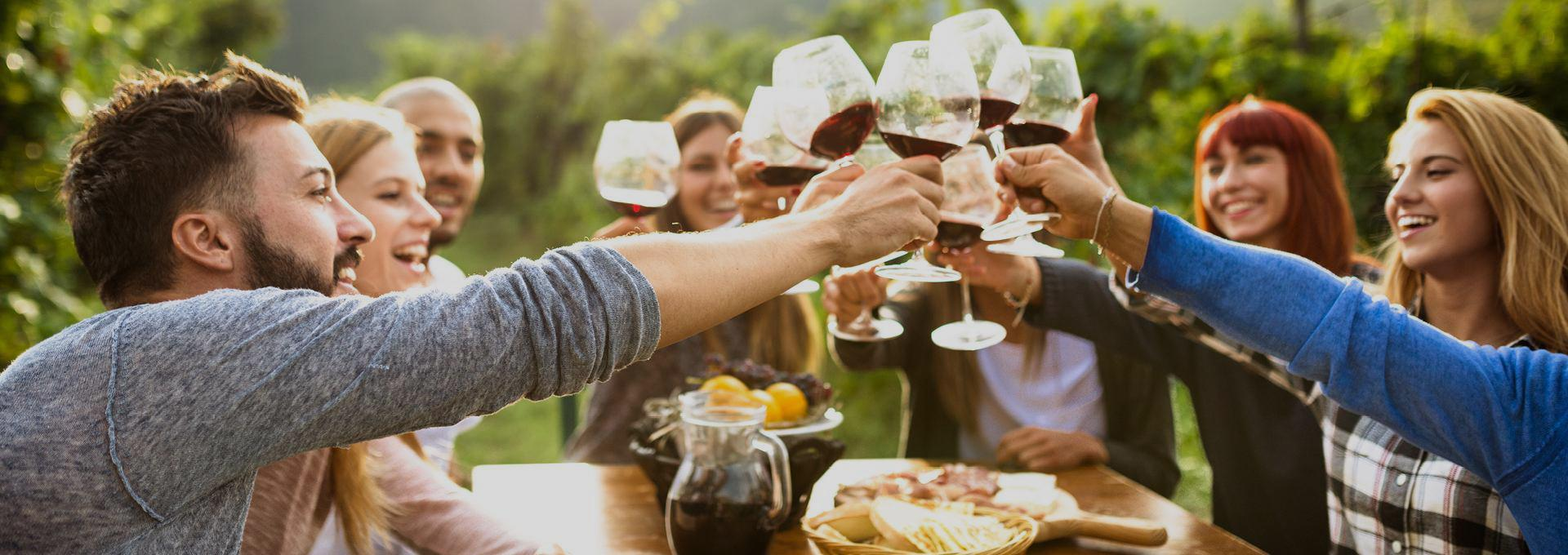 Group toast over a shared meal to getting the gang back together