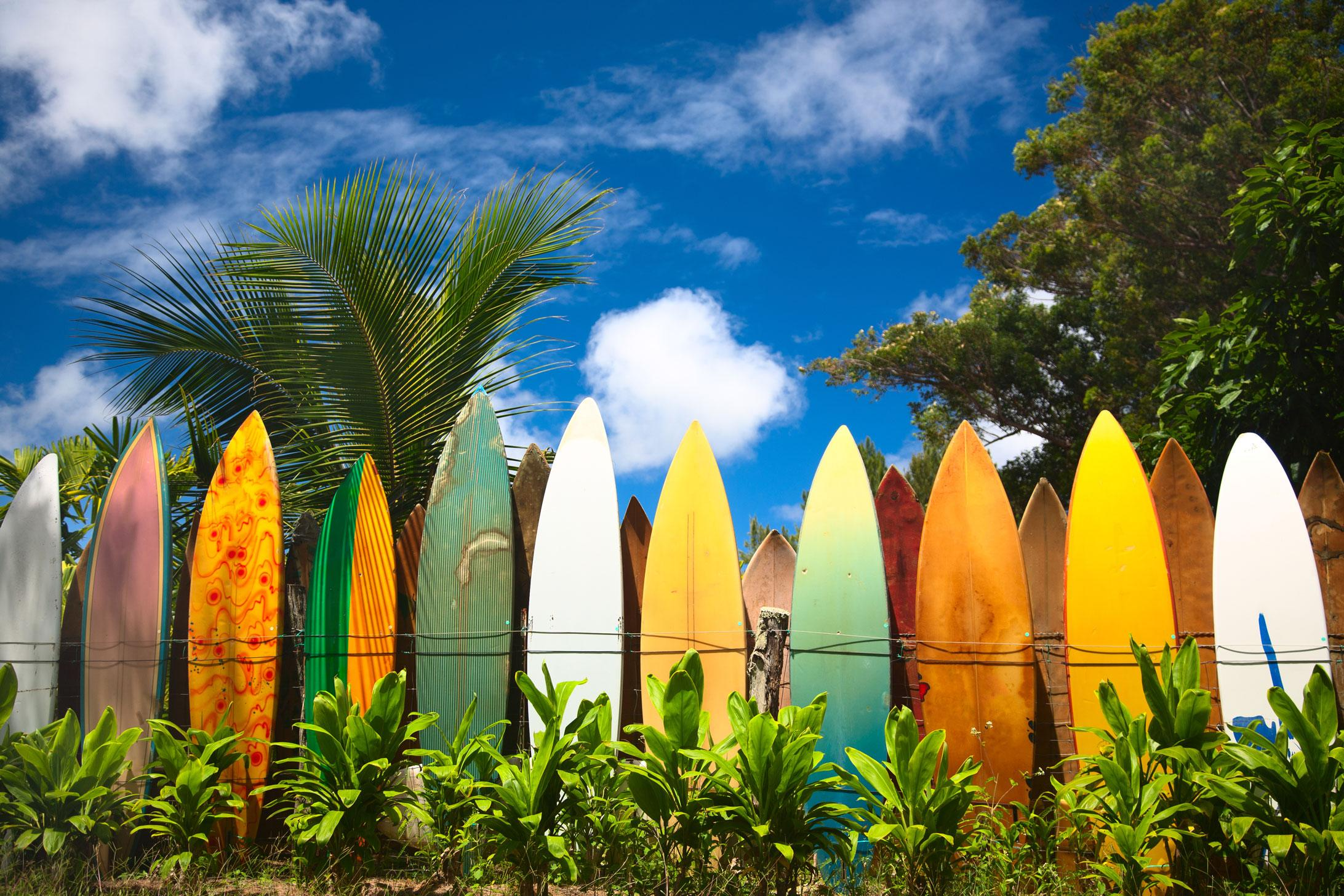 Experience the surf culture on your Hawaii vacation