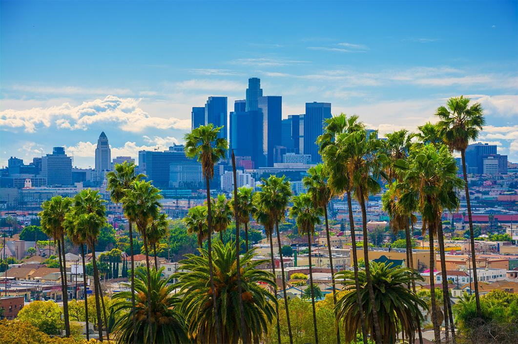 Views of palm trees and the skyline of Los Angeles