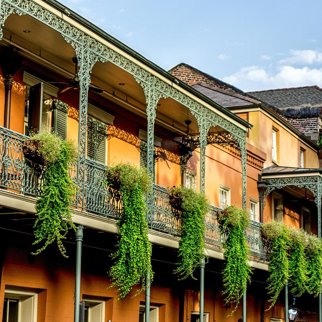 Plants hang along the sides of iron galleries in the famous French Quarter