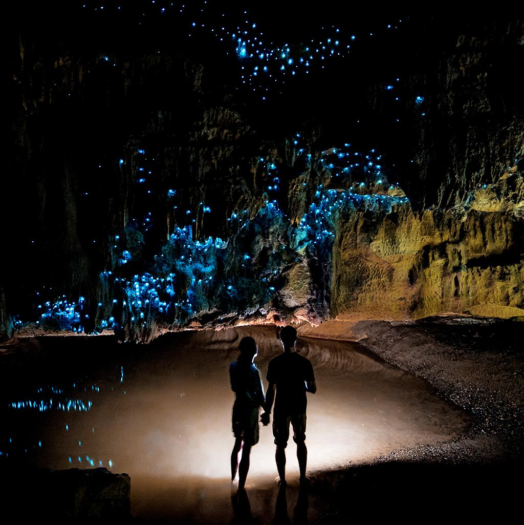 Experience the Waitomo glowworm caves with New Zealand vacation packages