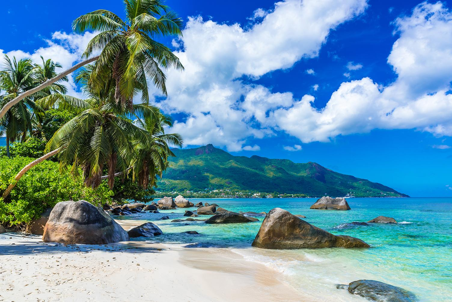 Views of palm tree beaches and mountains with Seychelles vacation packages