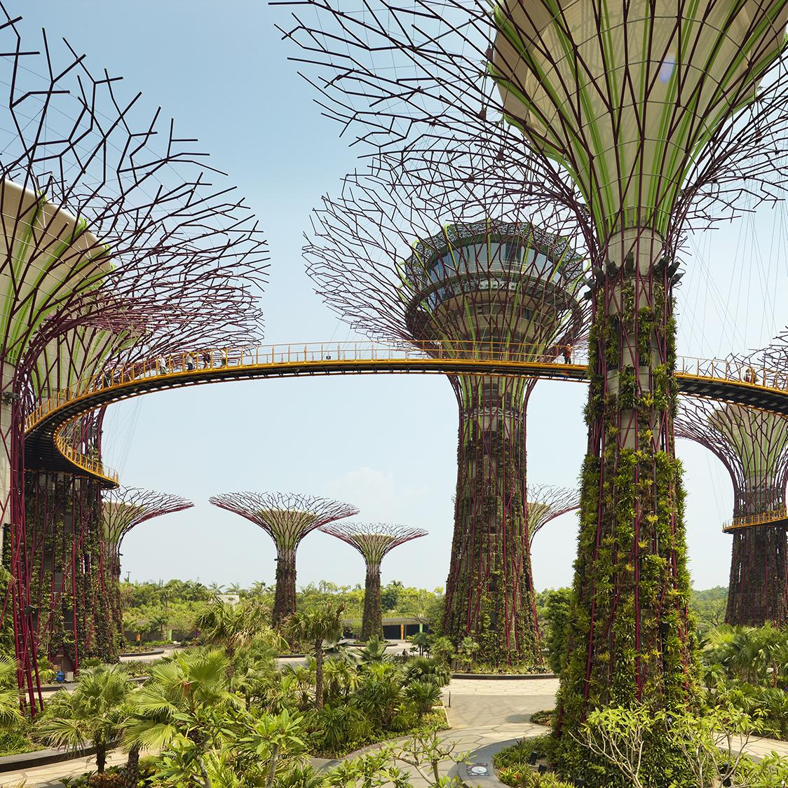 Beautiful botanical gardens in Singapore