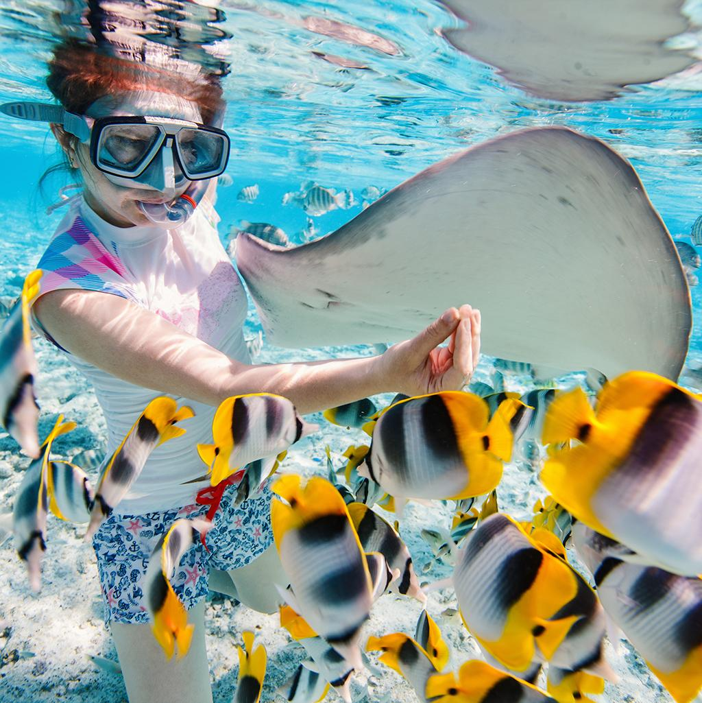 Swim with rays and fish on South Pacific vacation packages