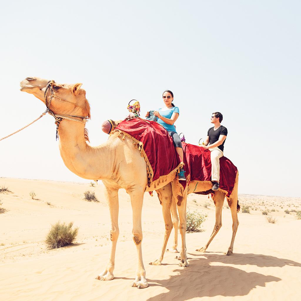Camel riding tour with United Arab Emirates vacation packages