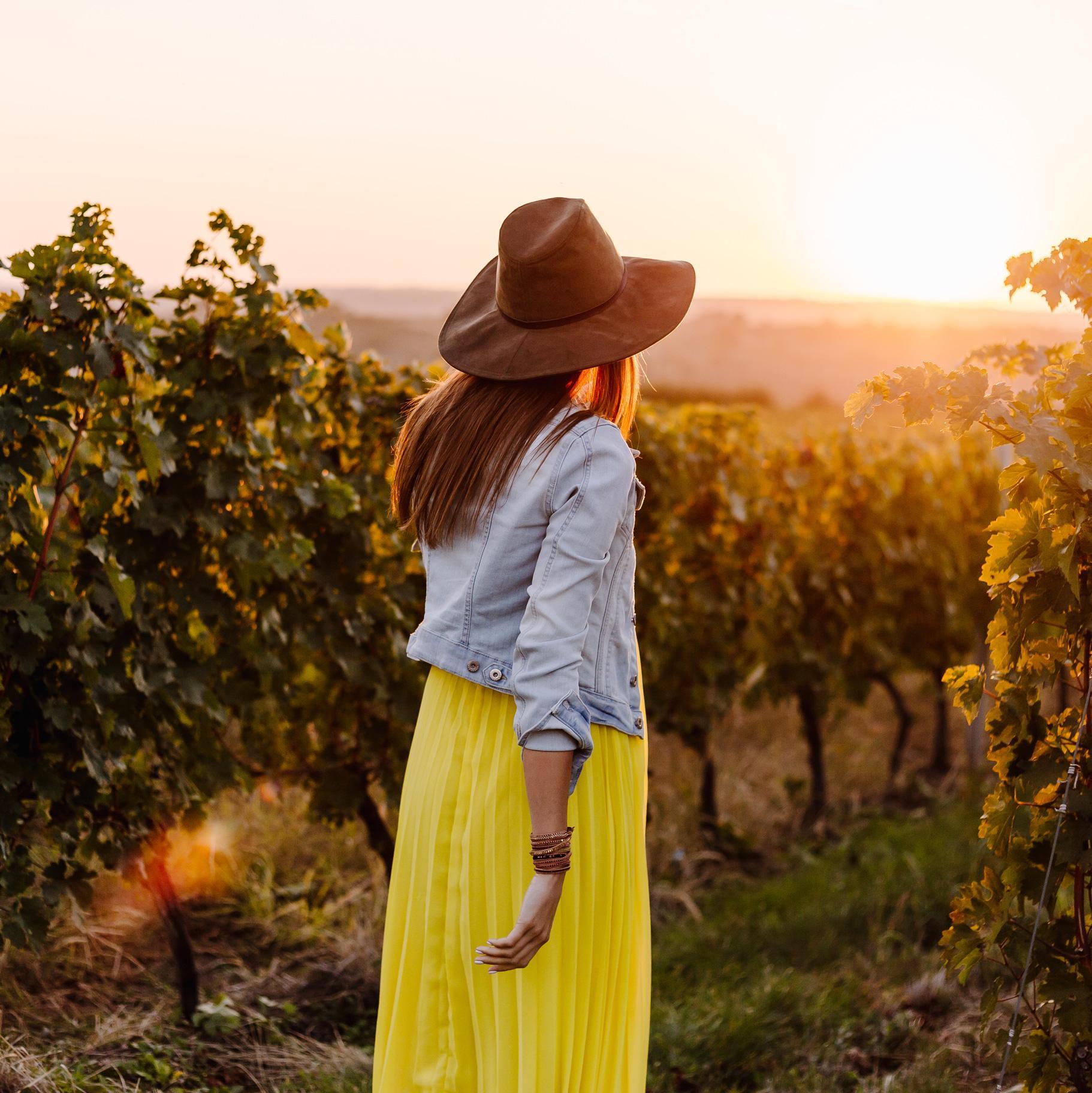 Australia vacation vineyard excursion