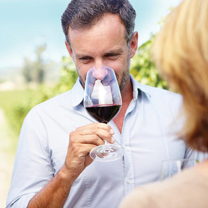 Try wine tasting in exotic countries with Back-Roads tours