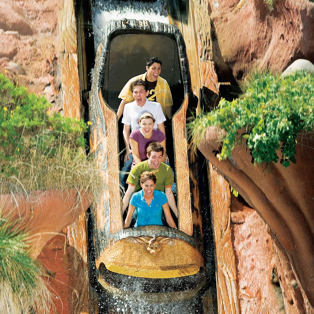 Ride rollercoasters and themed rides like Splash Mountain