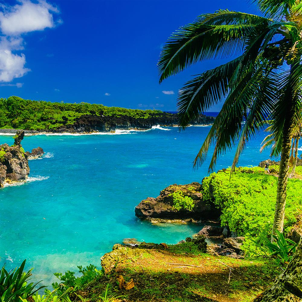 Hawaii Vacation Packages With Airfare