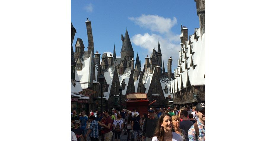 The Wizarding World of Harry Potter Guide for Nerds