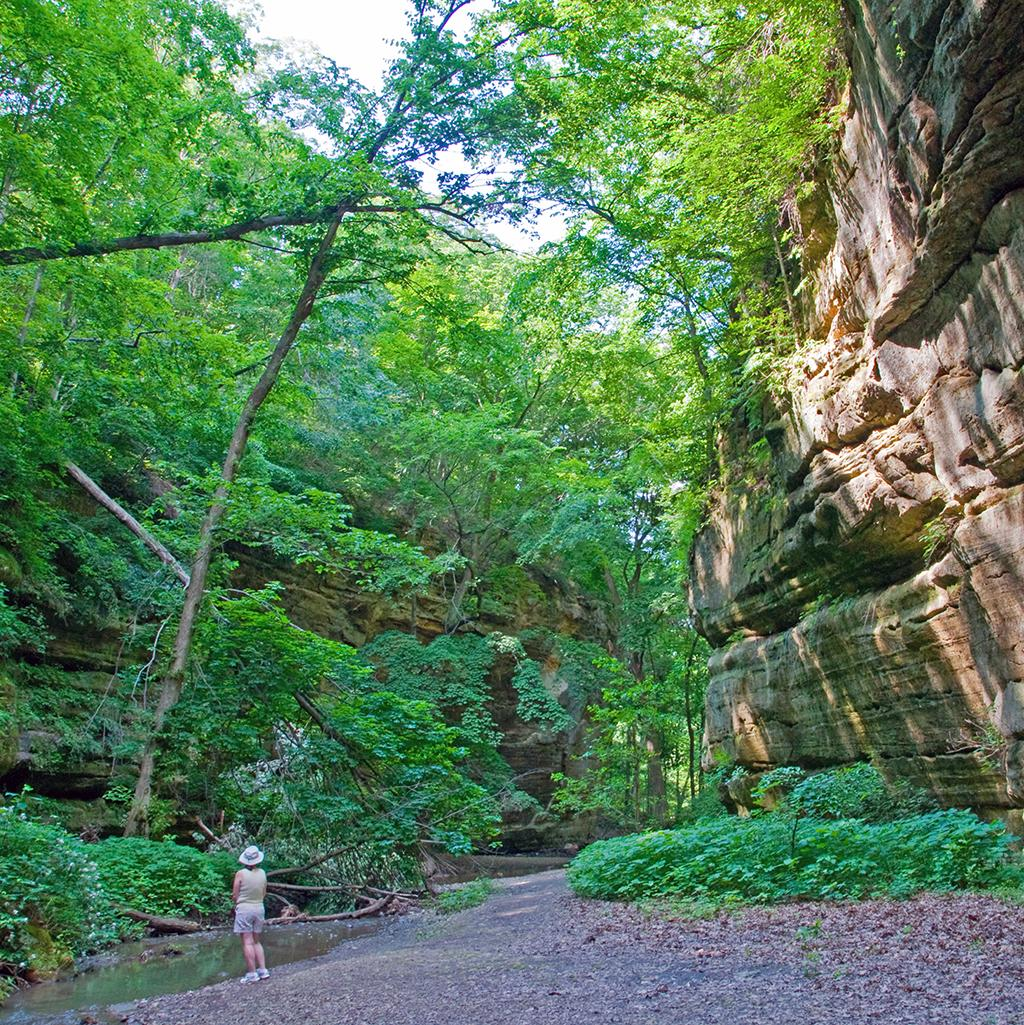 Hiking among cliffs and waterfalls in Illinois