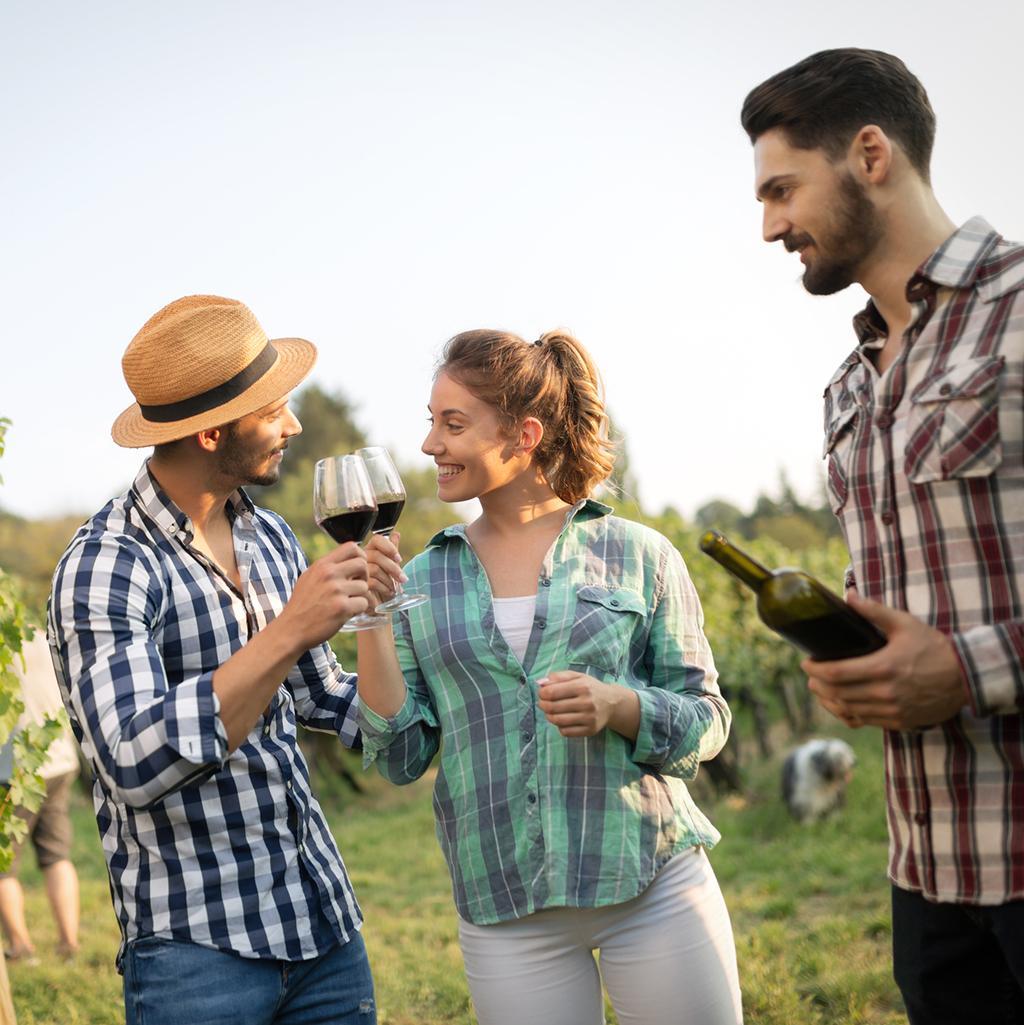 Wine tasting in Melbourne