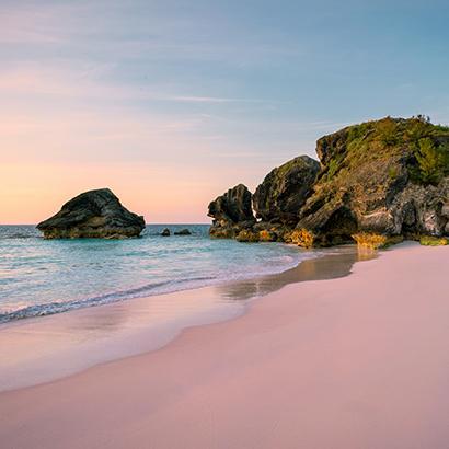moss covered boulders along a beach shoreline