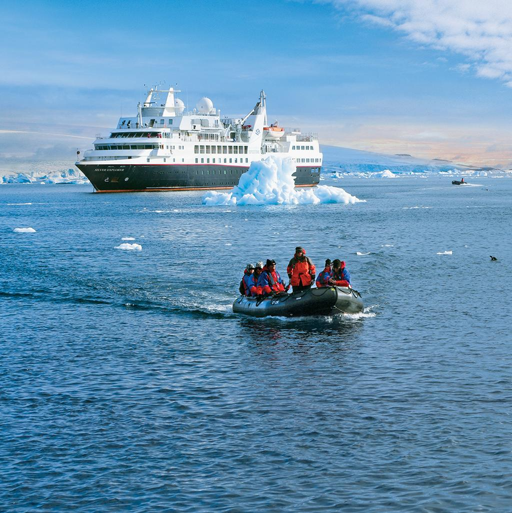 See icebergs and wildlife on your cruise tour